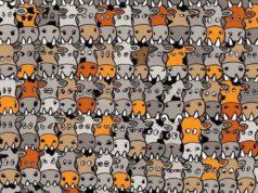 Možete li u mnoštvu krava naći psa? Dobro je skriven, ali ako imate oštro oko...
